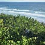 txai-beach